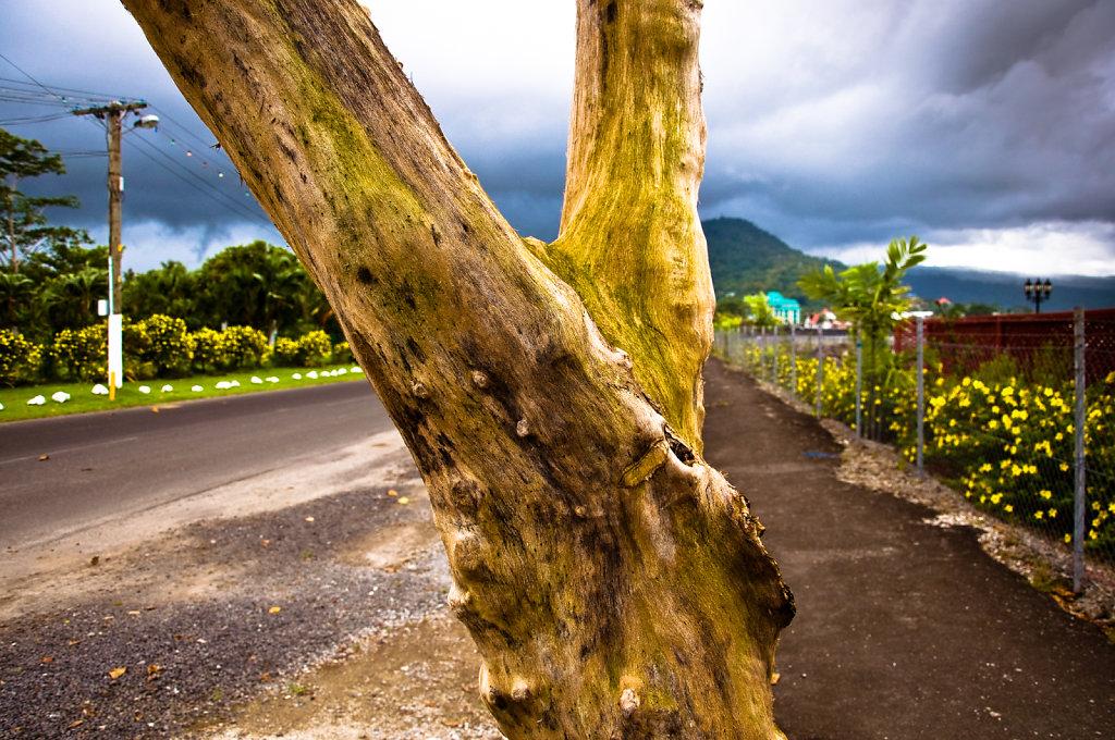 Apia  |  Samoa  |  2009